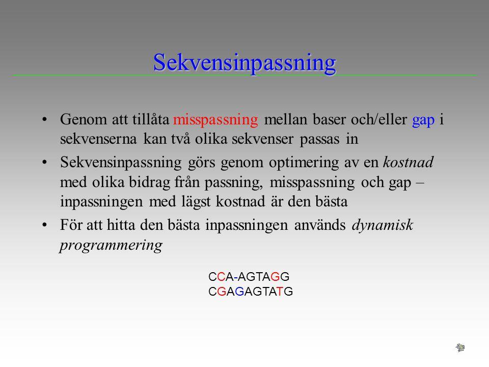 Sekvensinpassning Genom att tillåta misspassning mellan baser och/eller gap i sekvenserna kan två olika sekvenser passas in Sekvensinpassning görs gen
