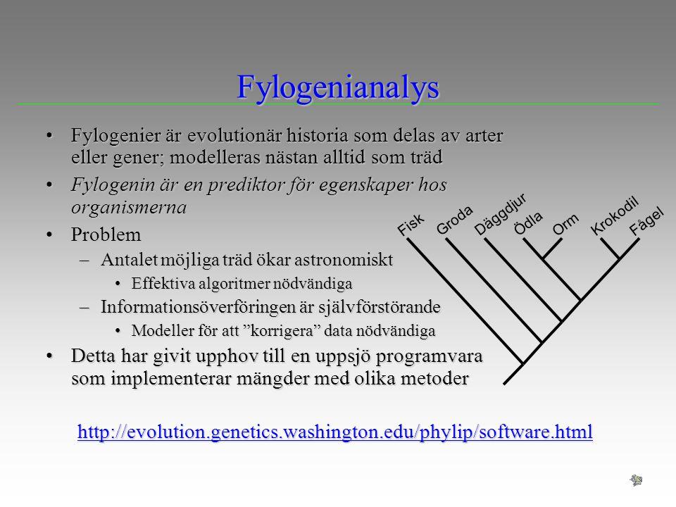Fylogenianalys Fylogenier är evolutionär historia som delas av arter eller gener; modelleras nästan alltid som trädFylogenier är evolutionär historia