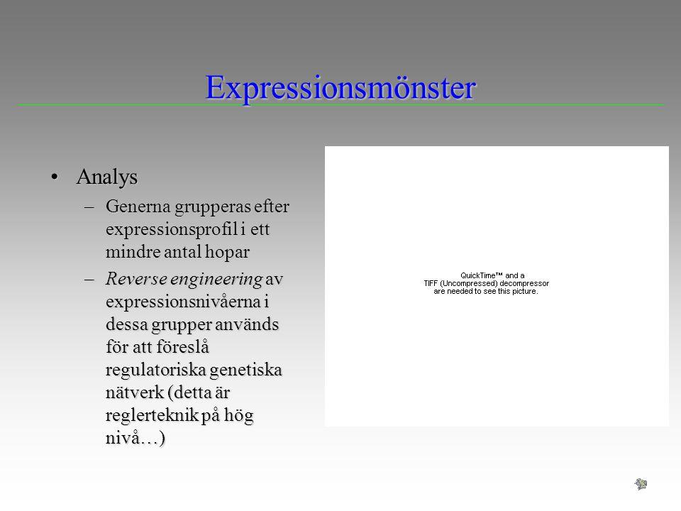 Expressionsmönster AnalysAnalys –Generna grupperas efter expressionsprofil i ett mindre antal hopar –Reverse engineering av expressionsnivåerna i dess