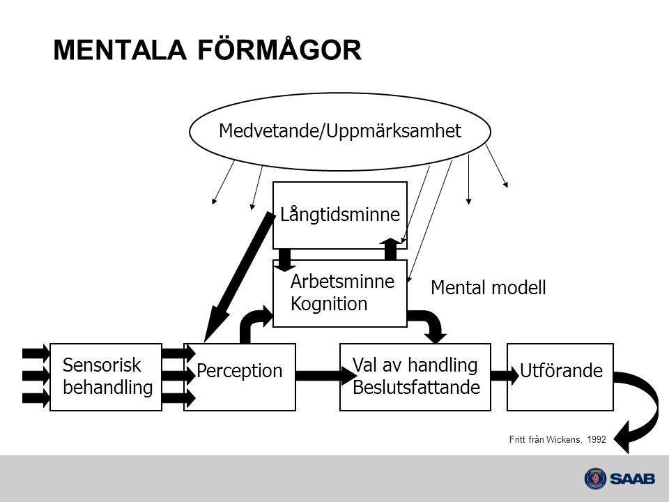 Sensorisk behandling Perception Arbetsminne Kognition Långtidsminne Val av handling Beslutsfattande Utförande Medvetande/Uppmärksamhet Fritt från Wick