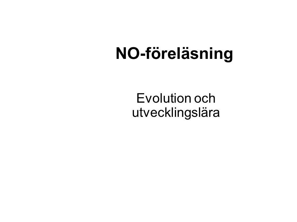 NO-föreläsning Evolution och utvecklingslära