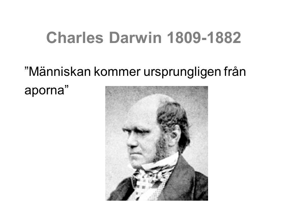 """Charles Darwin 1809-1882 """"Människan kommer ursprungligen från aporna"""""""