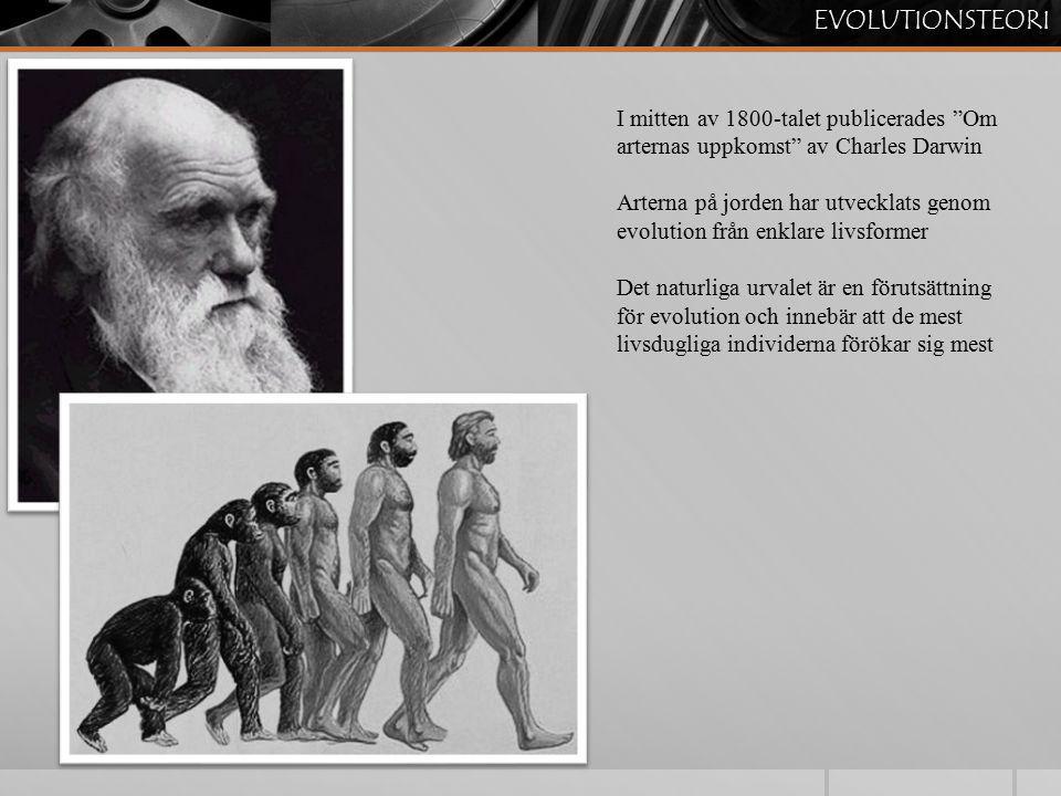 """EVOLUTIONSTEORI I mitten av 1800-talet publicerades """"Om arternas uppkomst"""" av Charles Darwin Arterna på jorden har utvecklats genom evolution från enk"""