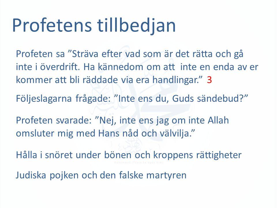 Profetens tillbedjan Profeten sa Sträva efter vad som är det rätta och gå inte i överdrift.