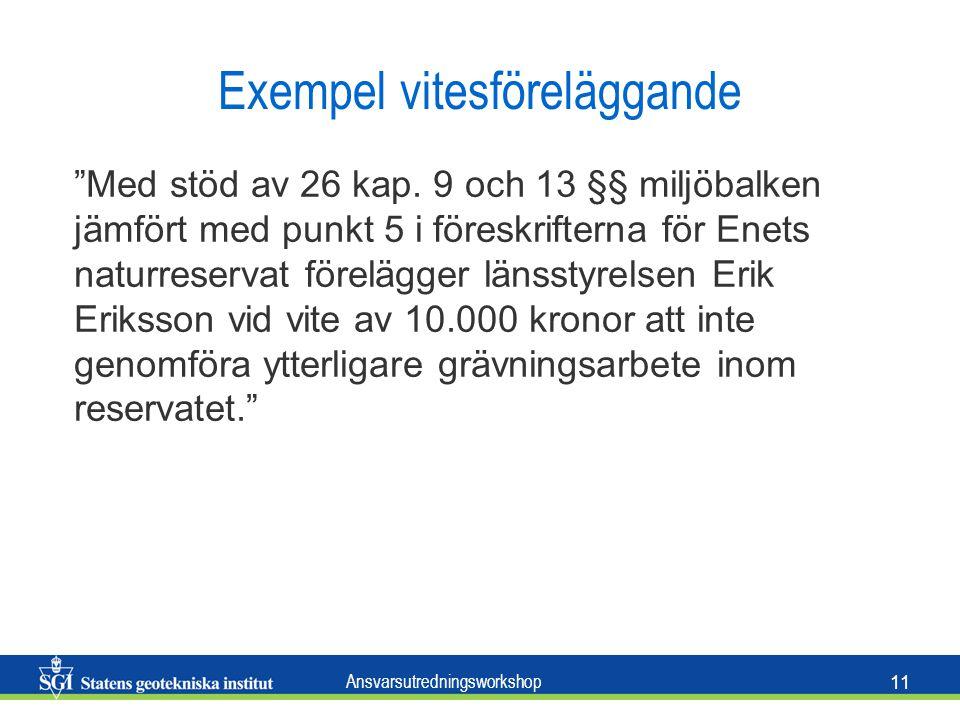 Ansvarsutredningsworkshop 11 Exempel vitesföreläggande Med stöd av 26 kap.