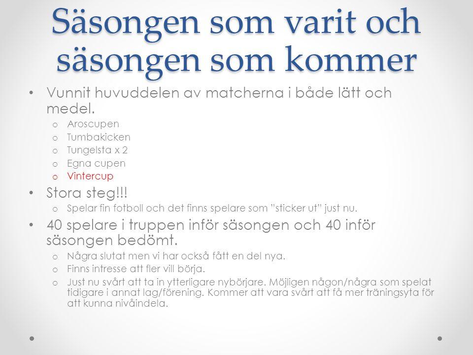Ekonomi och Lagkassan 36 300:- i lagkassan idag 300:- till lagkassan för 2014.