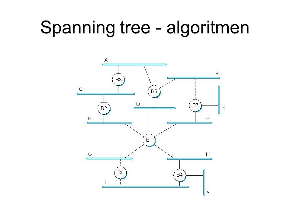 Spanning tree - algoritmen