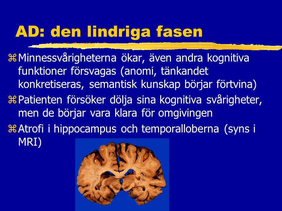 AD: den lindriga fasen zMinnessvårigheterna ökar, även andra kognitiva funktioner försvagas (anomi, tänkandet konkretiseras, semantisk kunskap börjar förtvina) zPatienten försöker dölja sina kognitiva svårigheter, men de börjar vara klara för omgivingen zAtrofi i hippocampus och temporalloberna (syns i MRI)