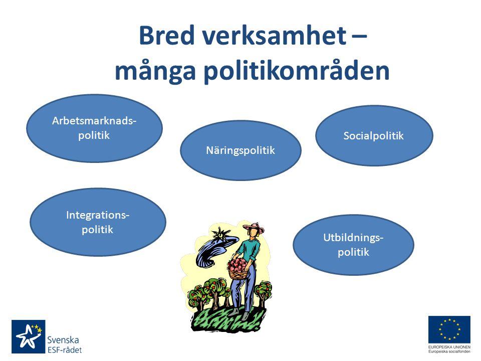 Bred verksamhet – många politikområden Utbildnings- politik Arbetsmarknads- politik Näringspolitik Socialpolitik Integrations- politik