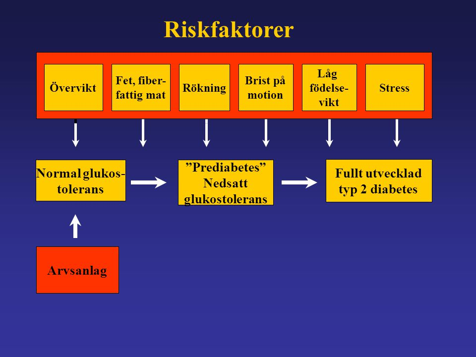 """Övervikt Fet, fiber- fattig mat Rökning Brist på motion Låg födelse- vikt Stress Normal glukos- tolerans Arvsanlag """"Prediabetes"""" Nedsatt glukostoleran"""