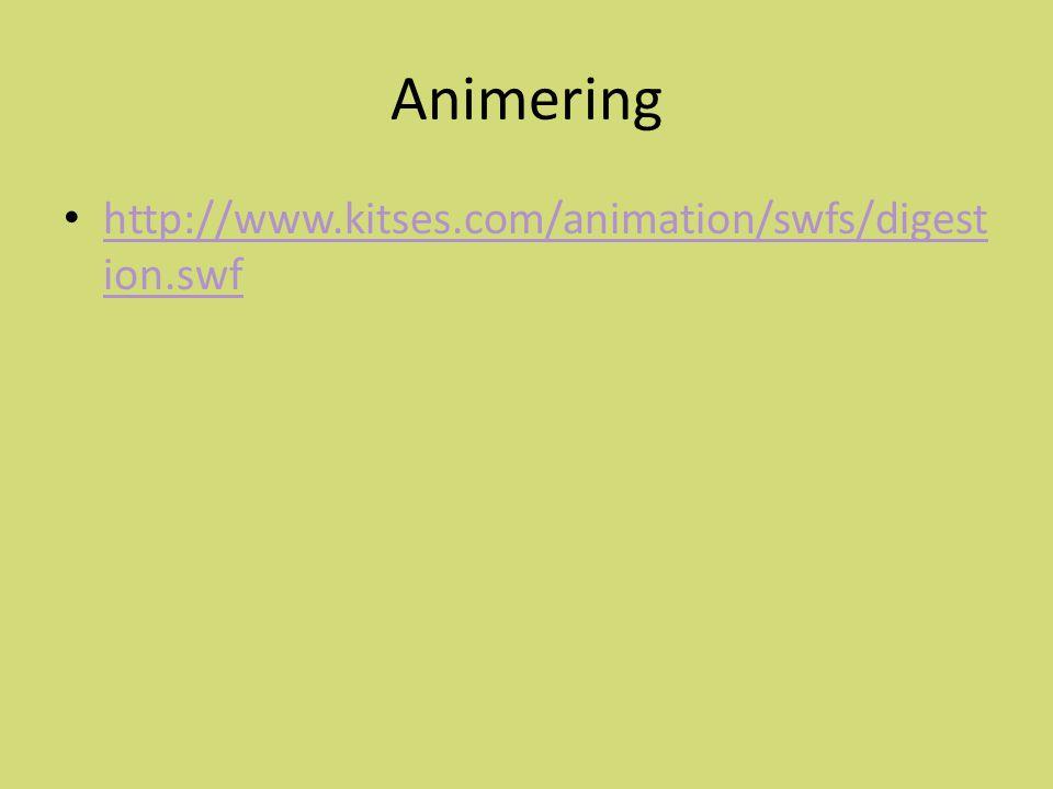 Animering http://www.kitses.com/animation/swfs/digest ion.swf http://www.kitses.com/animation/swfs/digest ion.swf