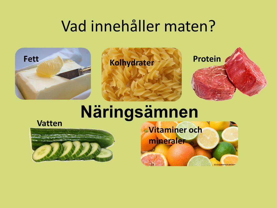 Vad innehåller maten? Näringsämnen Fett Kolhydrater Protein Vatten Vitaminer och mineraler