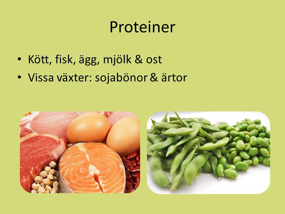 Proteiner Kött, fisk, ägg, mjölk & ost Vissa växter: sojabönor & ärtor