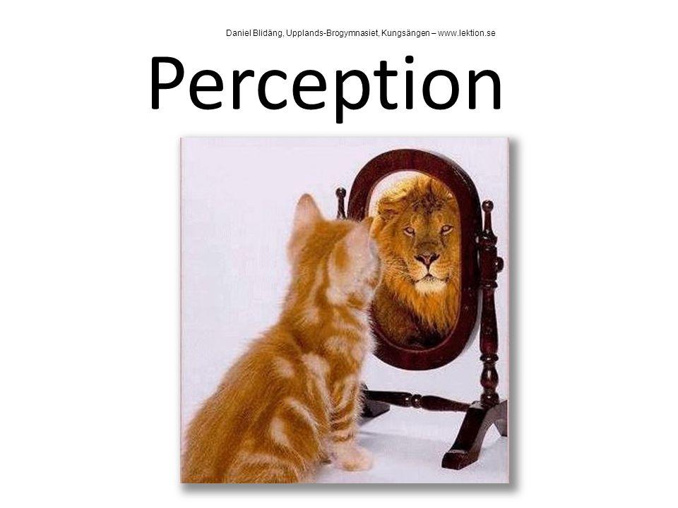 Perception Vi är inte i direktkontakt med verkligheten Vi uppfattar endast en tolkning