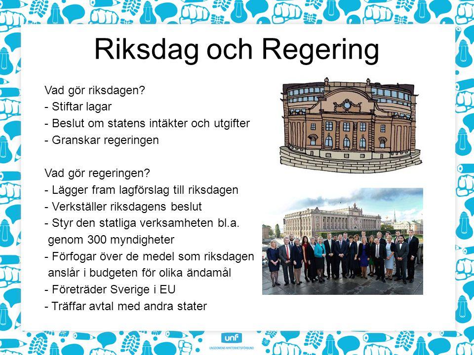 Riksdag och Regering Vad gör riksdagen.
