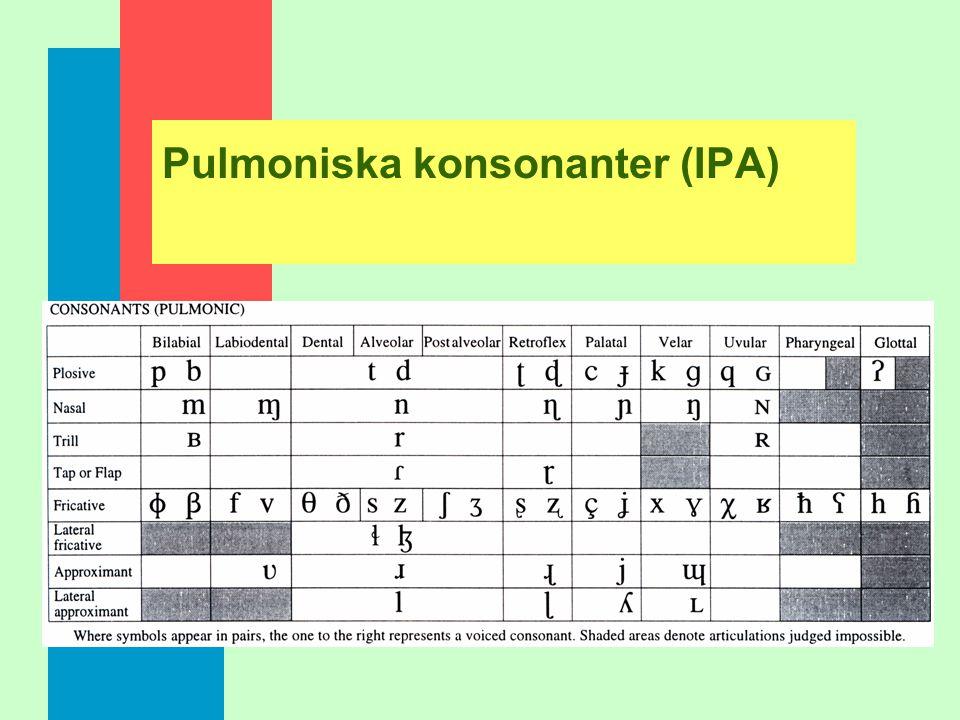 Konsonanter: pulmoniska – icke-pulmoniska n Pulmoniska konsonanter - exhalatorisk, egressiv n Icke pulmoniska konsonanter - glottala: ejektiver, implo