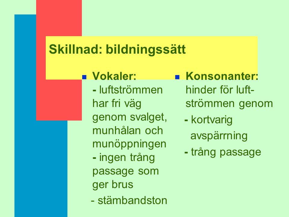 Grundstruktur n segment och prosodi/suprasegment n segment: seriellt ordnade men inflätade i varandra n vokaler och konsonanter n prosodin har segment