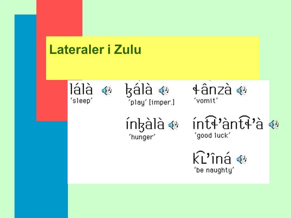 Lateraler i Zulu
