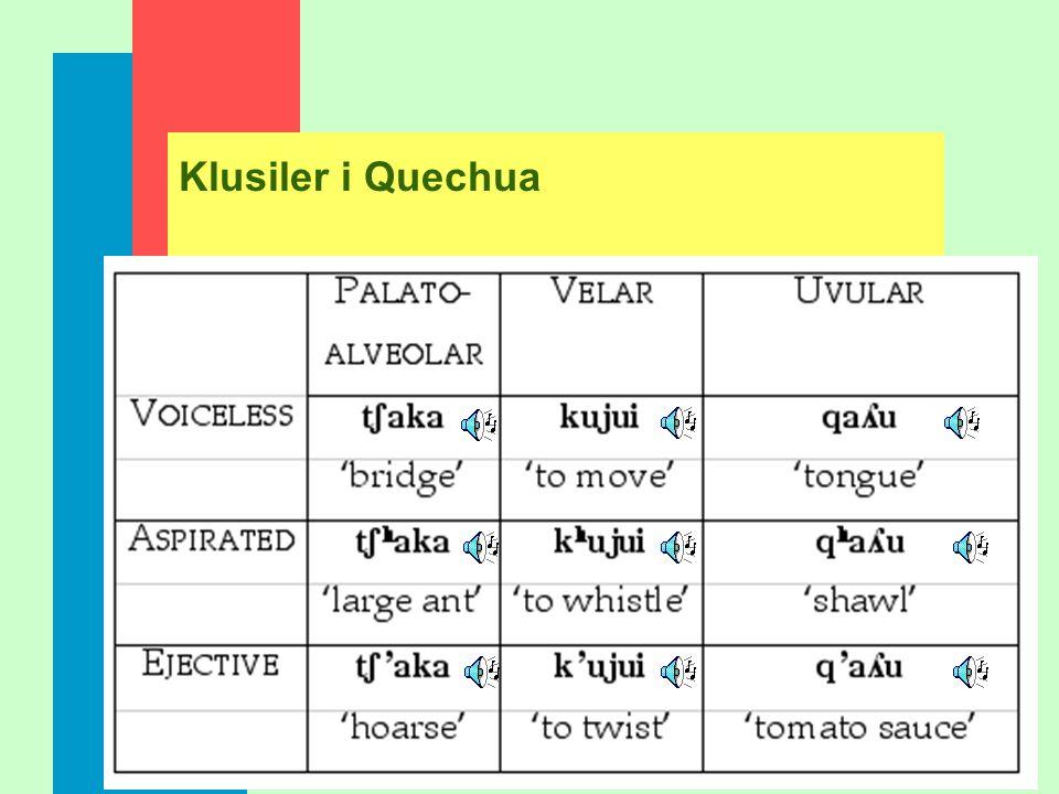 Klusiler i Quechua