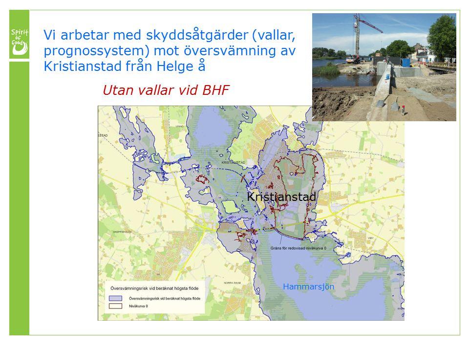 Vi arbetar med skyddsåtgärder (vallar, prognossystem) mot översvämning av Kristianstad från Helge å Utan vallar vid BHF Kristianstad Hammarsjön