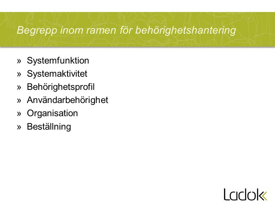 Begrepp inom ramen för behörighetshantering »Systemfunktion »Systemaktivitet »Behörighetsprofil »Användarbehörighet »Organisation »Beställning
