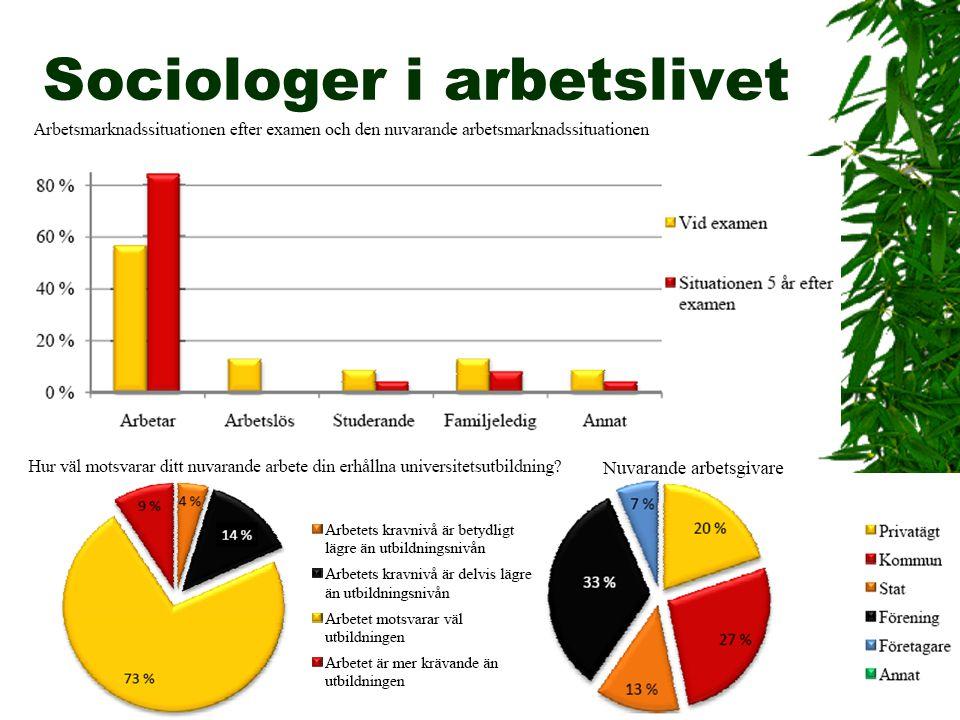Sociologer i arbetslivet