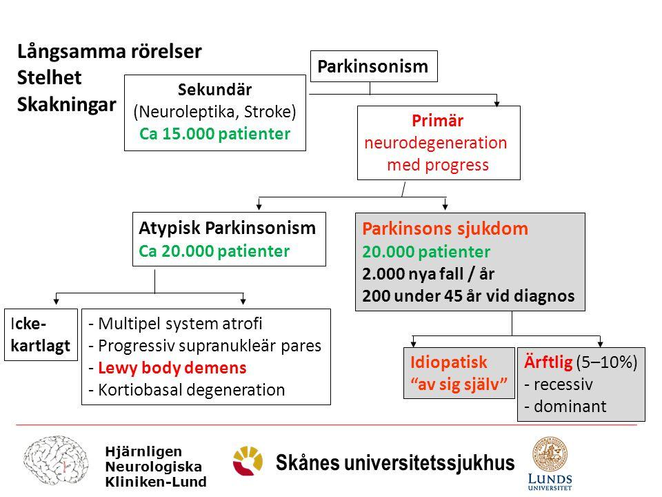 Hjärnligen Neurologiska Kliniken-Lund Skånes universitetssjukhus Glia DA-R2 familj DA-R1 familj Second messengers DAT Mitokondrie MAO Pre-synaptisk DA-R Dopamin
