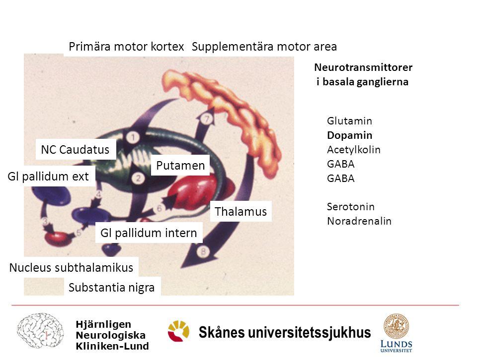 Hjärnligen Neurologiska Kliniken-Lund Skånes universitetssjukhus Monoterapi - L-dopa Snabbare effekt / tydligare mer lättavläst effkt Förbättringen kommer snabbare Monoterapi - DA Senareläggning av komplikationer / on – off / med DA Generellt sätt lägre tolerans för biverkningar Äldre sämre (åldrade – andra sjukdomar – demens inslaget / blodtryck) Tidig kombinationsbehandling L-dopa-DA