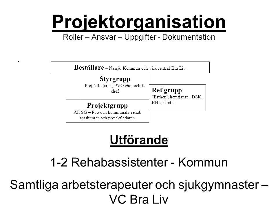Styrgrupp Projektledaren, PVO chef och K chef Ref grupp Esther , hemtjänst, DSK, BHL, chef… Beställare – Nässjö Kommun och vårdcentral Bra Liv Projektgrupp AT, SG – Pvo och kommunala rehab asssitenter och projektledaren Utförande 1-2 Rehabassistenter - Kommun Samtliga arbetsterapeuter och sjukgymnaster – VC Bra Liv Projektorganisation Roller – Ansvar – Uppgifter - Dokumentation.