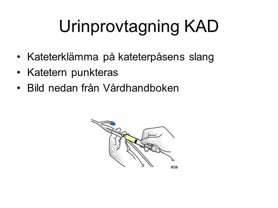 Urinprovtagning KAD Kateterklämma på kateterpåsens slang Katetern punkteras Bild nedan från Vårdhandboken