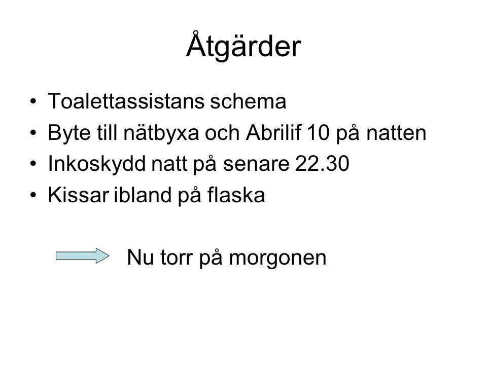 Åtgärder Toalettassistans schema Byte till nätbyxa och Abrilif 10 på natten Inkoskydd natt på senare 22.30 Kissar ibland på flaska Nu torr på morgonen