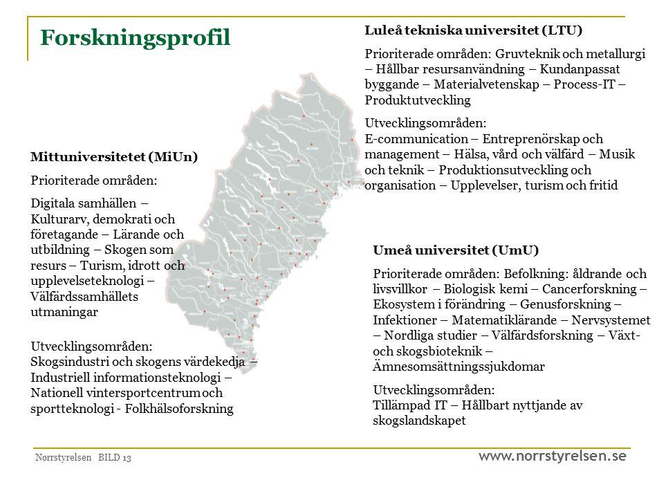 www.norrstyrelsen.se Norrstyrelsen BILD 13 Forskningsprofil Luleå tekniska universitet (LTU) Prioriterade områden: Gruvteknik och metallurgi – Hållbar