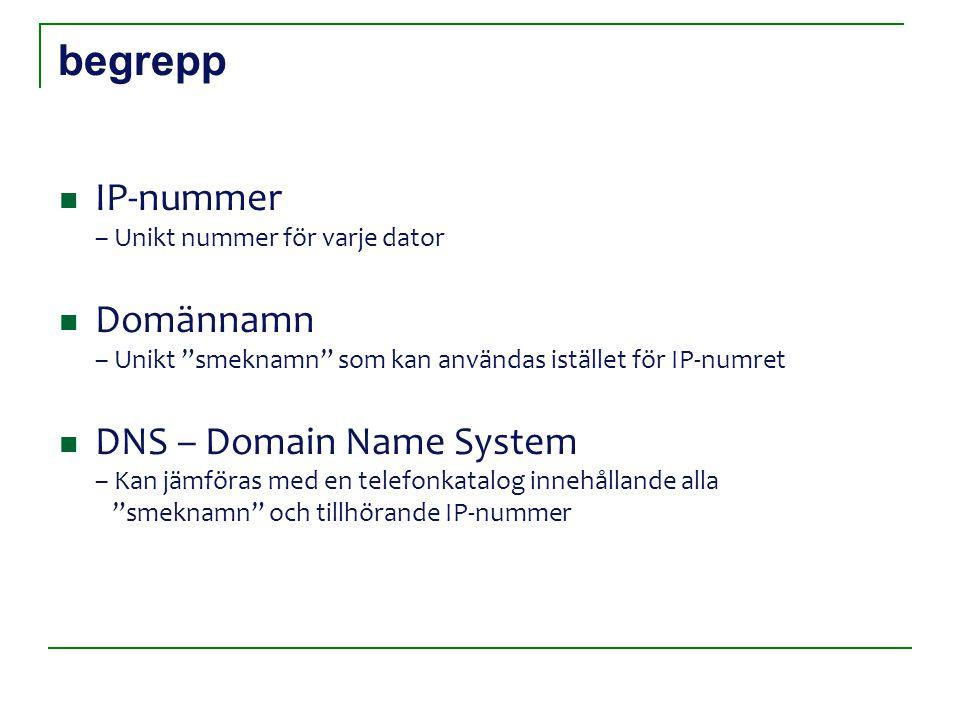 begrepp IP-nummer – Unikt nummer för varje dator Domännamn – Unikt smeknamn som kan användas istället för IP-numret DNS – Domain Name System – Kan jämföras med en telefonkatalog innehållande alla smeknamn och tillhörande IP-nummer