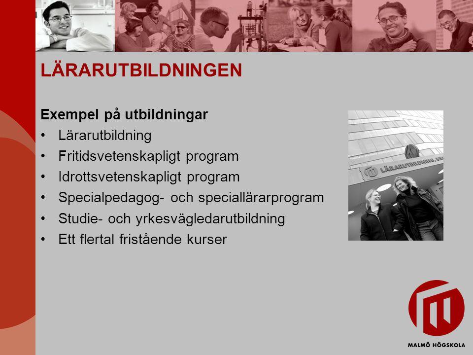 LÄRARUTBILDNINGEN Exempel på utbildningar Lärarutbildning Fritidsvetenskapligt program Idrottsvetenskapligt program Specialpedagog- och speciallärarprogram Studie- och yrkesvägledarutbildning Ett flertal fristående kurser