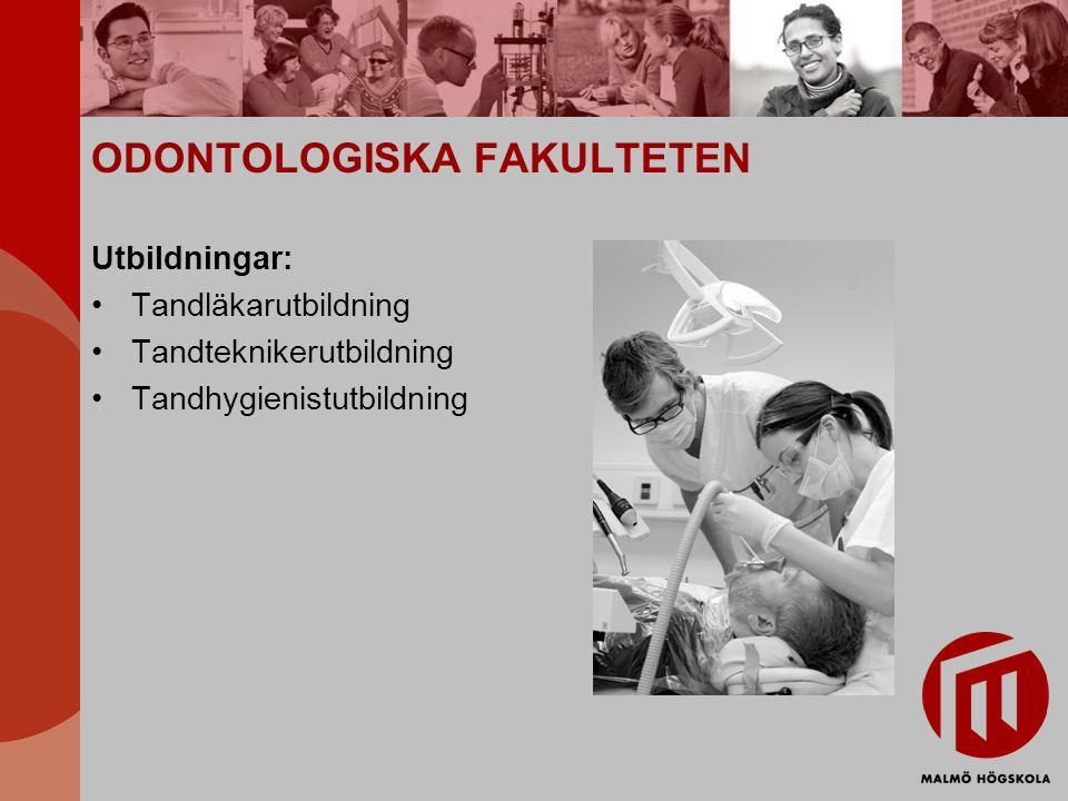 ODONTOLOGISKA FAKULTETEN Utbildningar: Tandläkarutbildning Tandteknikerutbildning Tandhygienistutbildning