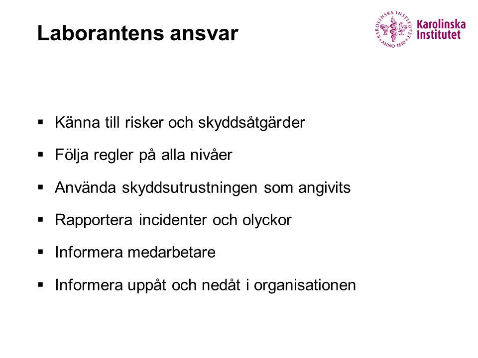  Känna till risker och skyddsåtgärder  Följa regler på alla nivåer  Använda skyddsutrustningen som angivits  Rapportera incidenter och olyckor  I