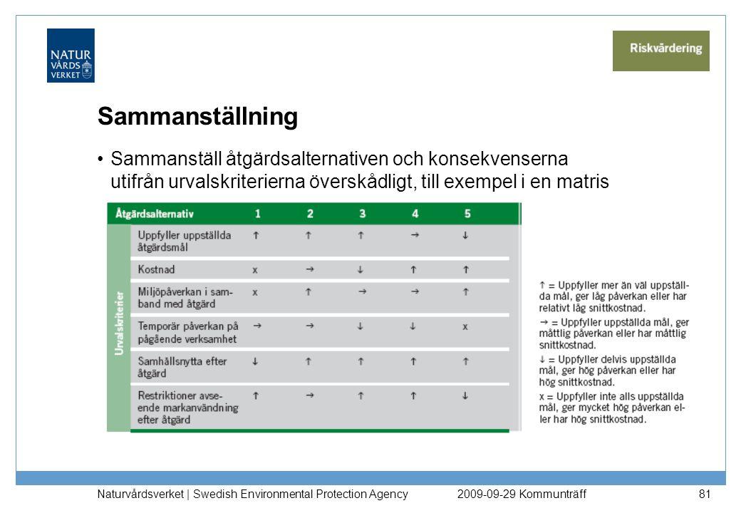 Sammanställning Sammanställ åtgärdsalternativen och konsekvenserna utifrån urvalskriterierna överskådligt, till exempel i en matris Naturvårdsverket |