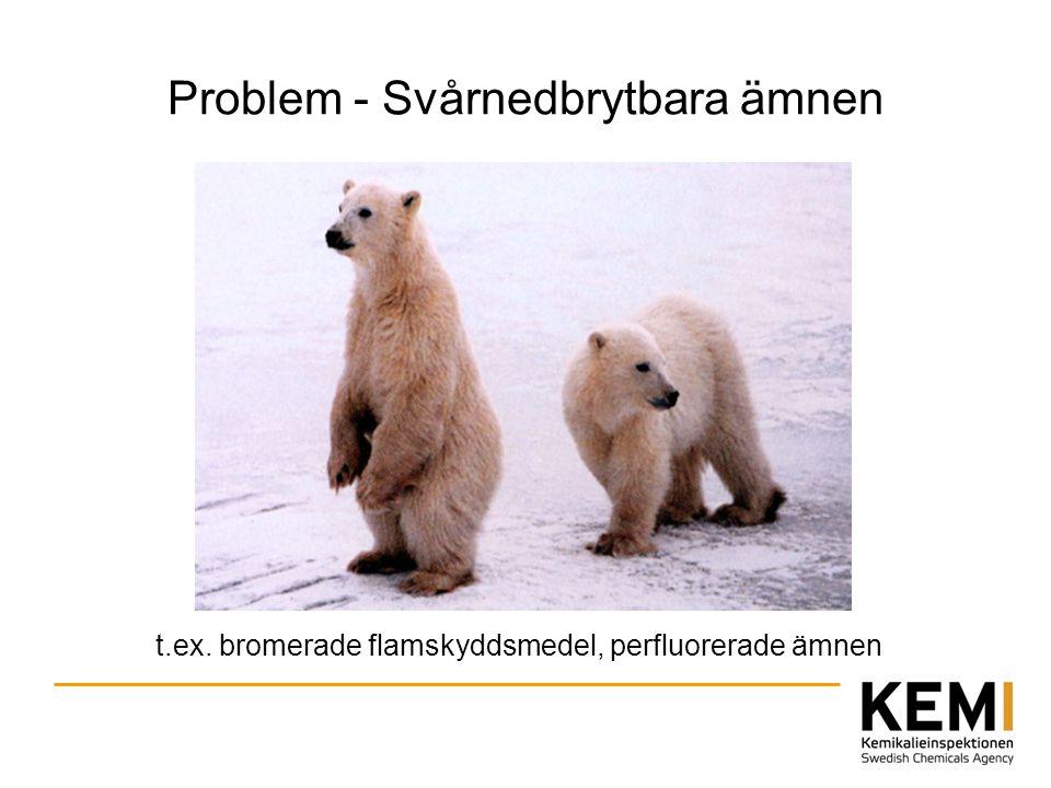 Problem - Svårnedbrytbara ämnen t.ex. bromerade flamskyddsmedel, perfluorerade ämnen