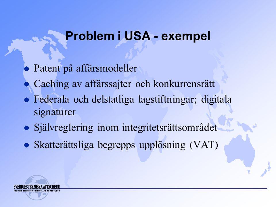 Problem i USA - exempel l Patent på affärsmodeller l Caching av affärssajter och konkurrensrätt l Federala och delstatliga lagstiftningar; digitala signaturer l Självreglering inom integritetsrättsområdet l Skatterättsliga begrepps upplösning (VAT)