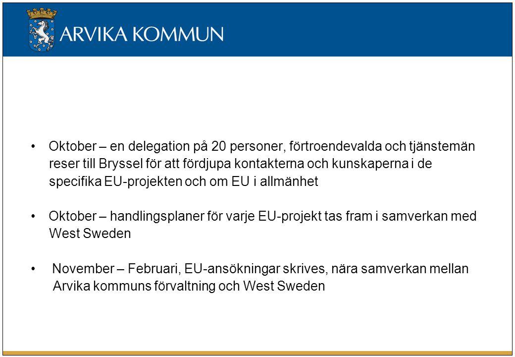 Oktober – en delegation på 20 personer, förtroendevalda och tjänstemän reser till Bryssel för att fördjupa kontakterna och kunskaperna i de specifika EU-projekten och om EU i allmänhet Oktober – handlingsplaner för varje EU-projekt tas fram i samverkan med West Sweden November – Februari, EU-ansökningar skrives, nära samverkan mellan Arvika kommuns förvaltning och West Sweden