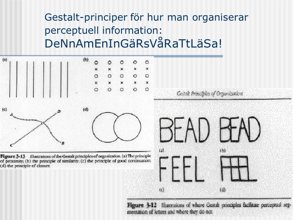 Gestalt-principer för hur man organiserar perceptuell information: DeNnAmEnInGäRsVåRaTtLäSa!