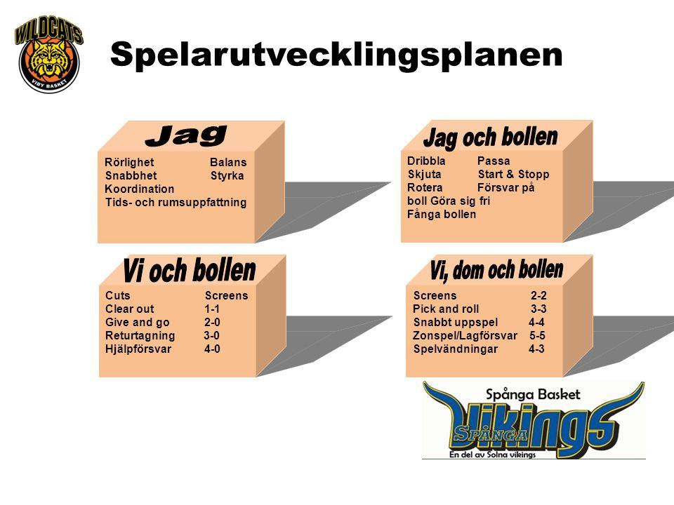 Rörlighet Balans Snabbhet Styrka Koordination Tids- och rumsuppfattning Dribbla Passa Skjuta Start & Stopp Rotera Försvar på boll Göra sig fri Fånga b