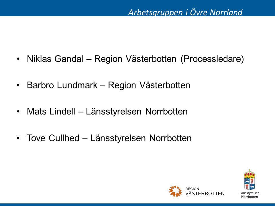 Niklas Gandal – Region Västerbotten (Processledare) Barbro Lundmark – Region Västerbotten Mats Lindell – Länsstyrelsen Norrbotten Tove Cullhed – Länsstyrelsen Norrbotten Arbetsgruppen i Övre Norrland