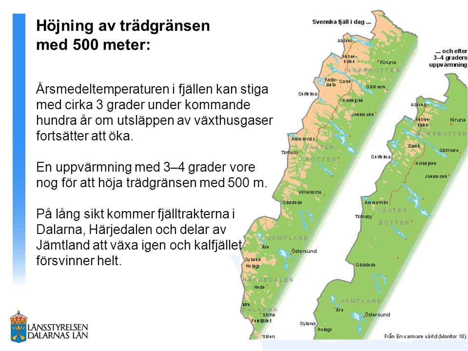 Höjning av trädgränsen med 500 meter: Årsmedeltemperaturen i fjällen kan stiga med cirka 3 grader under kommande hundra år om utsläppen av växthusgase