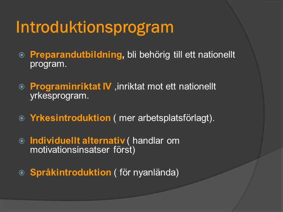 Introduktionsprogram  Preparandutbildning, bli behörig till ett nationellt program.  Programinriktat IV,inriktat mot ett nationellt yrkesprogram. 