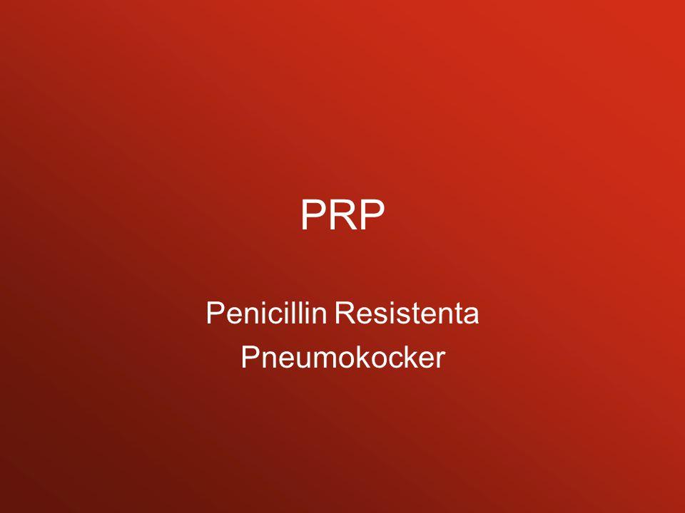 PRP Penicillin Resistenta Pneumokocker