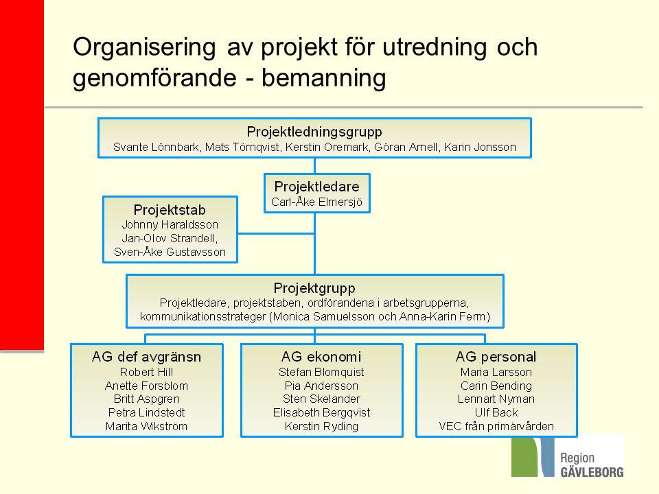 Organisering av projekt för utredning och genomförande - bemanning
