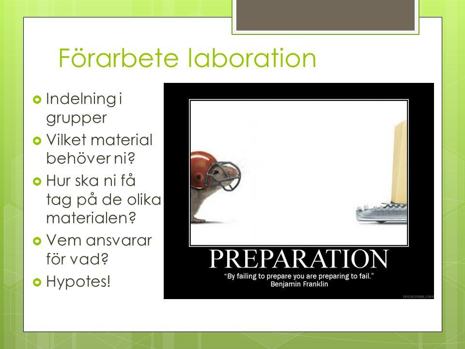 Förarbete laboration  Indelning i grupper  Vilket material behöver ni?  Hur ska ni få tag på de olika materialen?  Vem ansvarar för vad?  Hypotes