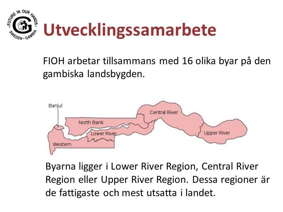 Utvecklingssamarbete FIOH arbetar tillsammans med 16 olika byar på den gambiska landsbygden. Byarna ligger i Lower River Region, Central River Region