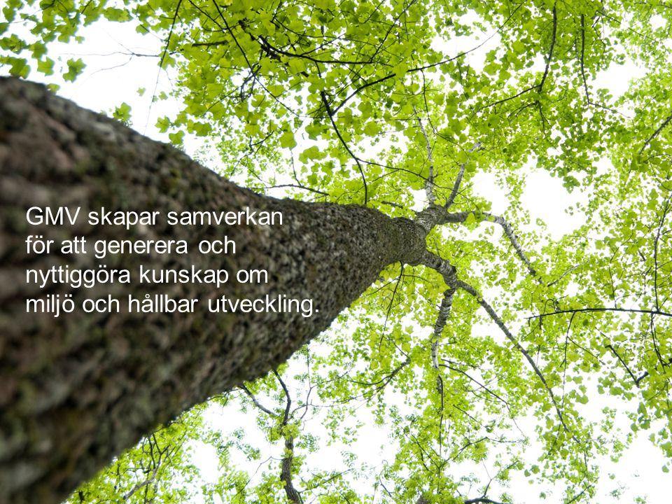 GMV skapar samverkan för att generera och nyttiggöra kunskap om miljö och hållbar utveckling.